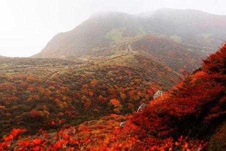 くじゅう連山へ遠征登山 -Day2-