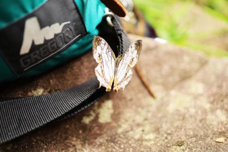 鹿児島金峰山でクライミング体験