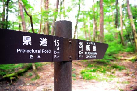 甑岳登山 六観音から白鳥温泉登山道に合流